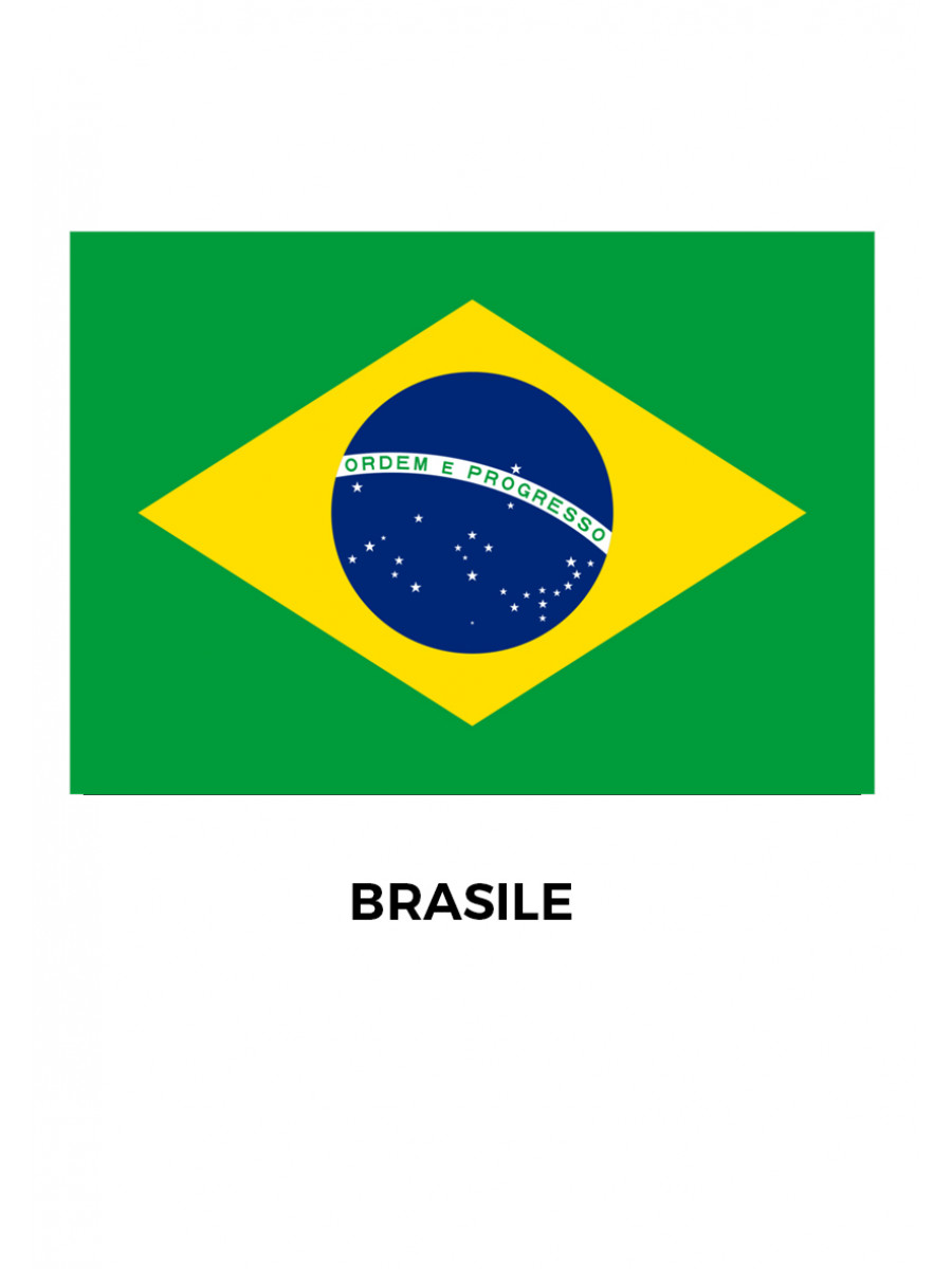 BANDIERA BRASILE CM.100x150